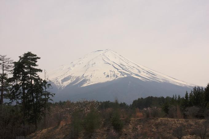 富士山-5.JPG