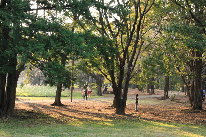 昭和記念公園0011.JPG