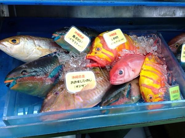 沖縄40005.JPG