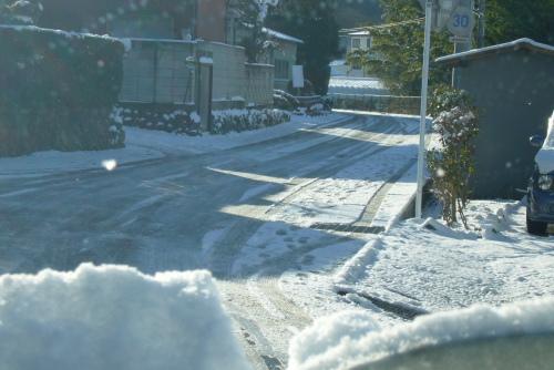 雪-3.JPG