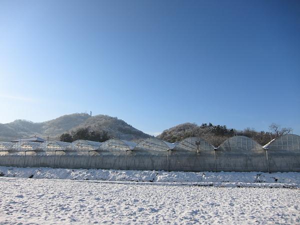 雪0002.JPG