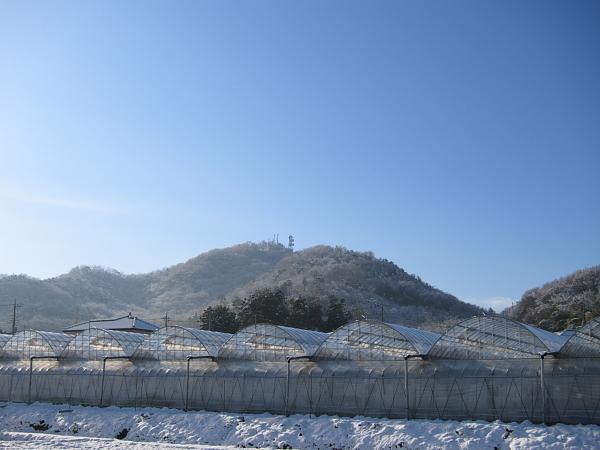 雪0003.JPG