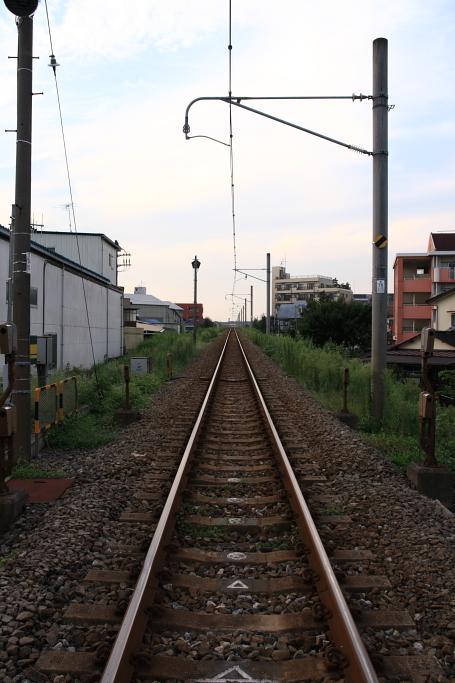 夕方-1.JPG