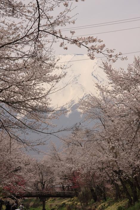 富士山-4.JPG