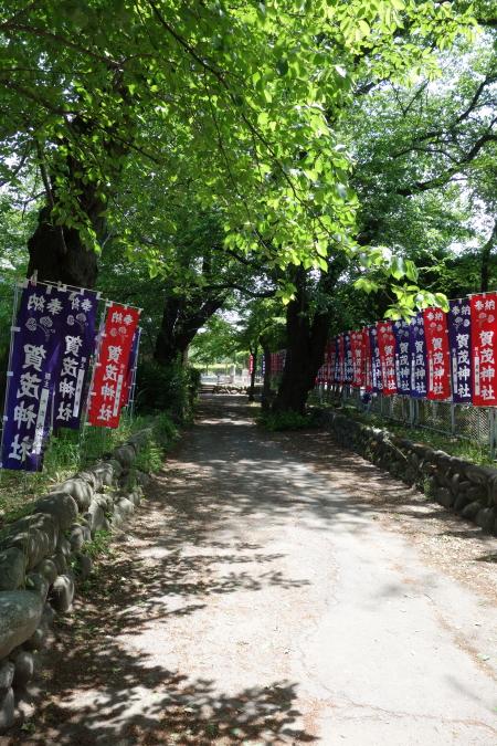 散歩0002.JPG