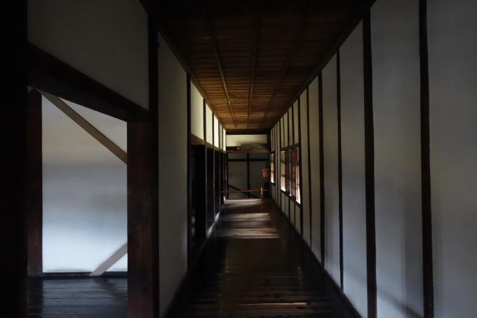 熊本20007.JPG