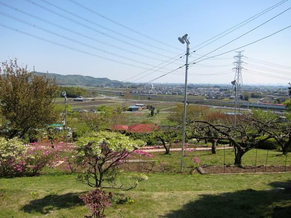 農園-1.JPG