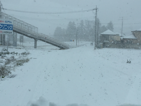 雪-1.JPG
